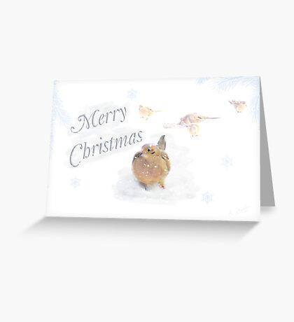 Gentle Christmas Card Greeting Card