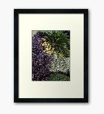 Winter in the tropics - Invierno en la zona tropical Framed Print