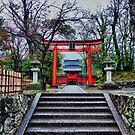 Kyoto Temple, Japan by Abtin Eshraghi