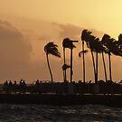 Sunset Serenade by JanG