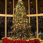 Christmas Tree by Michael McCasland