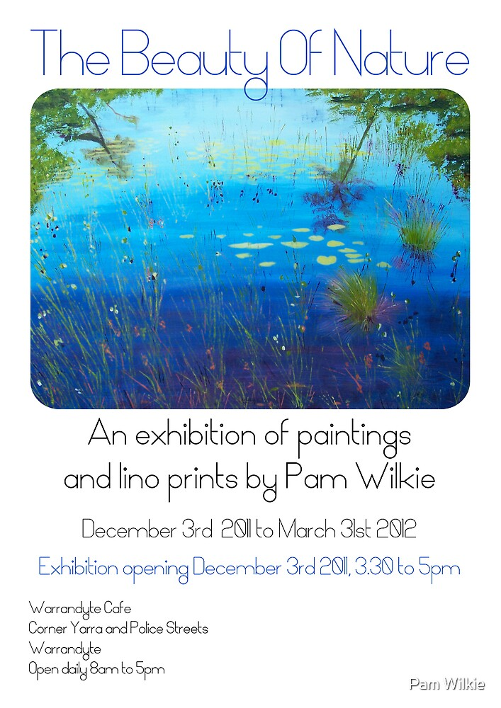 Exhibition opening this Saturday by Pam Wilkie