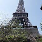 Eiffel Tower by medley