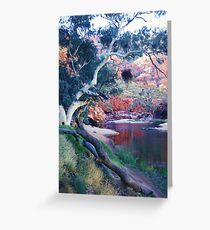 The Waterhole, Ormiston Gorge Greeting Card