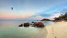 A Walk in Paradise by Adam Gormley