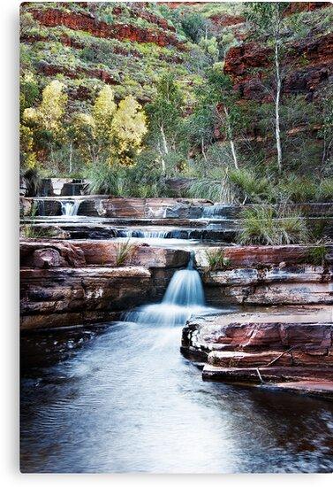 Dales Gorge(cal) by Sheldon Pettit