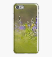 Selective focus on a cluster of Blue lupin (Lupinus pilosus) iPhone Case/Skin