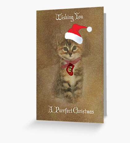 Merry Christmas Kitten Greeting Card