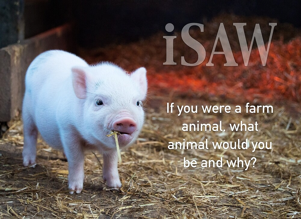 If You Were A Farm Animal by iSAWcompany