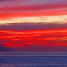 Extreme colours - Colores muy fuertes, Puerto Vallarta, Mexico by PtoVallartaMex