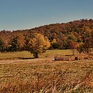 Autumn Pasture by Rick  Friedle