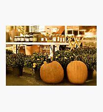 Honey Photographic Print