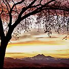 Colorful November Sunset Sky and Longs Peak by Bo Insogna
