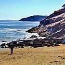 Walking the coast ! by Nancy Richard