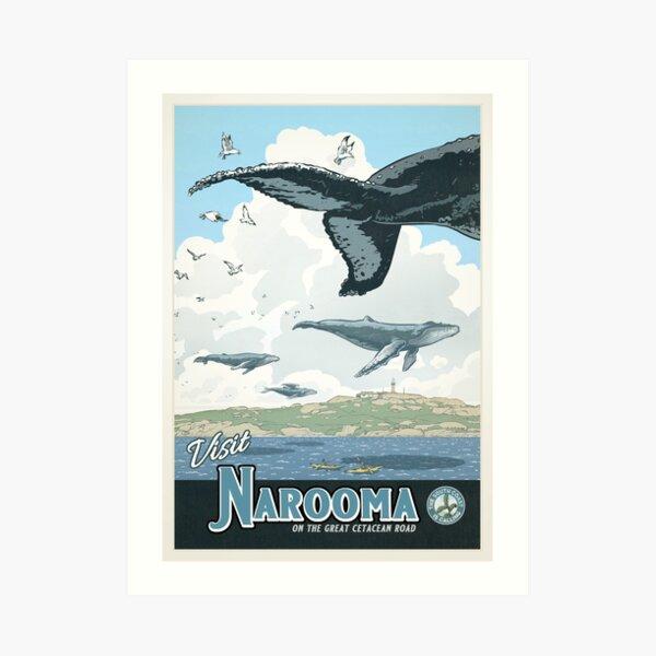 Narooma Art Print