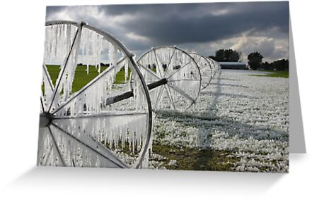 Now thats called ice ... ! by Brenda Dahl