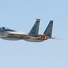 F-15C Eagle #AF 80-0028 Departing Nellis AFB  by Henry Plumley
