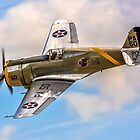 Curtiss P-36C 38-210 N80FR - a Polished Performer by Colin Smedley