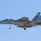 Side Shot of F-15D Eagle #TY AF 80 0056 on Approach by Henry Plumley