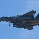 OT AF 91-0322 F-15E Strike Eagle by Henry Plumley