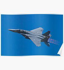 SJ AF 87 0179 F-15E Strike Eagle Left Bank  Poster