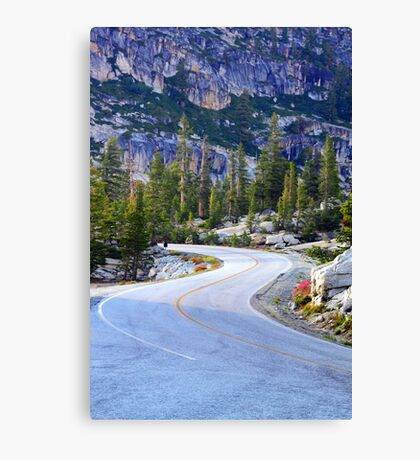 Down To The Valley Canvas Print
