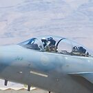 Close Up of F-15S Eagle,  9212 by Henry Plumley