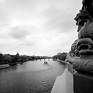 Pont Neuf by Peppedam