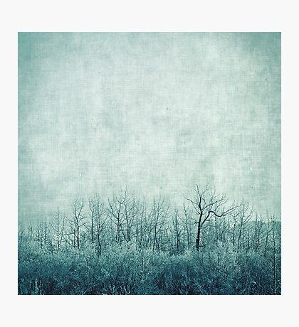 pondering silence Photographic Print