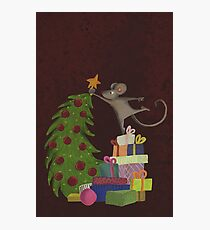 On top of the mousechristmastree Photographic Print