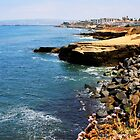 San Diego, California by Norma  Ledesma