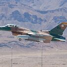 #WA AF 87 0321 F-16C Fighting Falcon by Henry Plumley