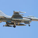 OT AF 87-0362 F-16C Fighting Falcon by Henry Plumley