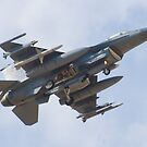 OT AF 97-0107 F-16C Fighting Falcon by Henry Plumley