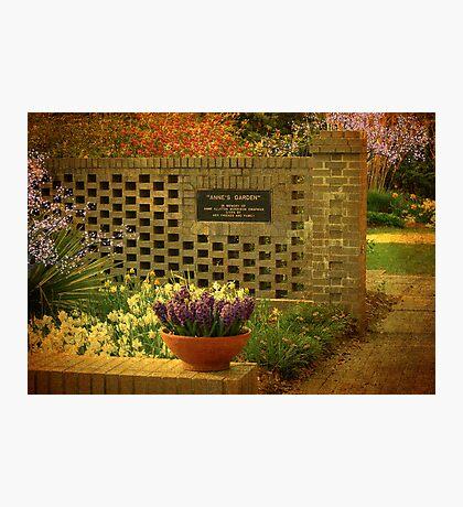Annie's Spring Garden Photographic Print