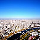 Paris de la tour Eiffel by Peppedam