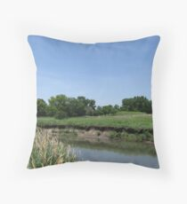 River Bank on the Kishwaukee Throw Pillow