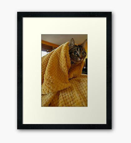 Golden Shroud Framed Print