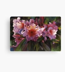 "Watercolor ""Autumn Gold"" Rhododendron  Canvas Print"