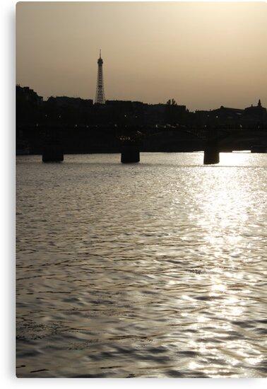 Paris - Seine reflections August 2011 by Jeanne Horak-Druiff
