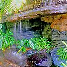 botanic garden HDR by andytechie