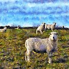 Dartmoor Sheep, Devon UK by David Carton