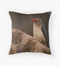 Red Billed Oxpecker Throw Pillow