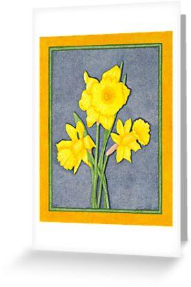 Daffodil Glory by Judy Newcomb