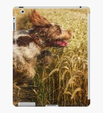 Brown Roan Italian Spinone Dog in Action iPad Case/Skin