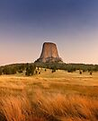 Devils Tower at Sunset  by Alex Preiss