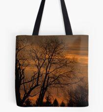 120311-38 Tote Bag