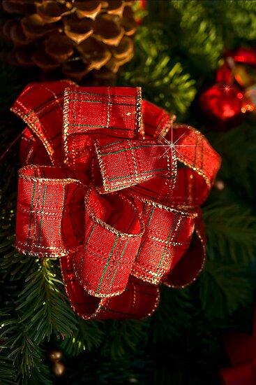 Holiday ribbon by Celeste Mookherjee