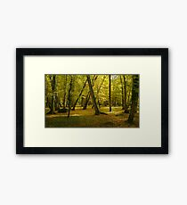 Autumn in the forest of Chenonceau Framed Print