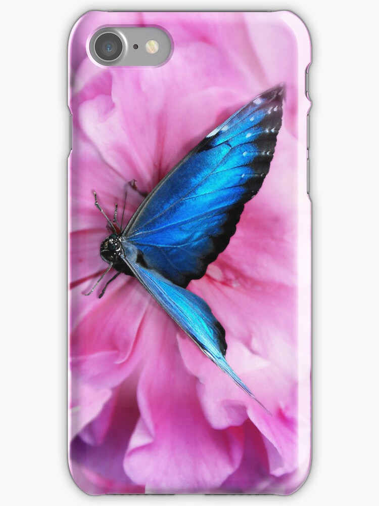 The butterfly - Iphone Case by Doty